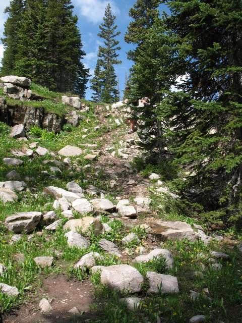 Ruthlake Steep Trail Before